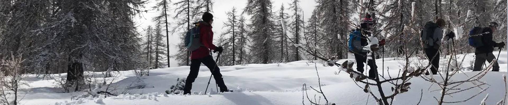 chalet-alpelune-sneeuwschoenwandelen-2
