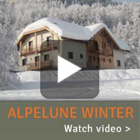 Video Winter